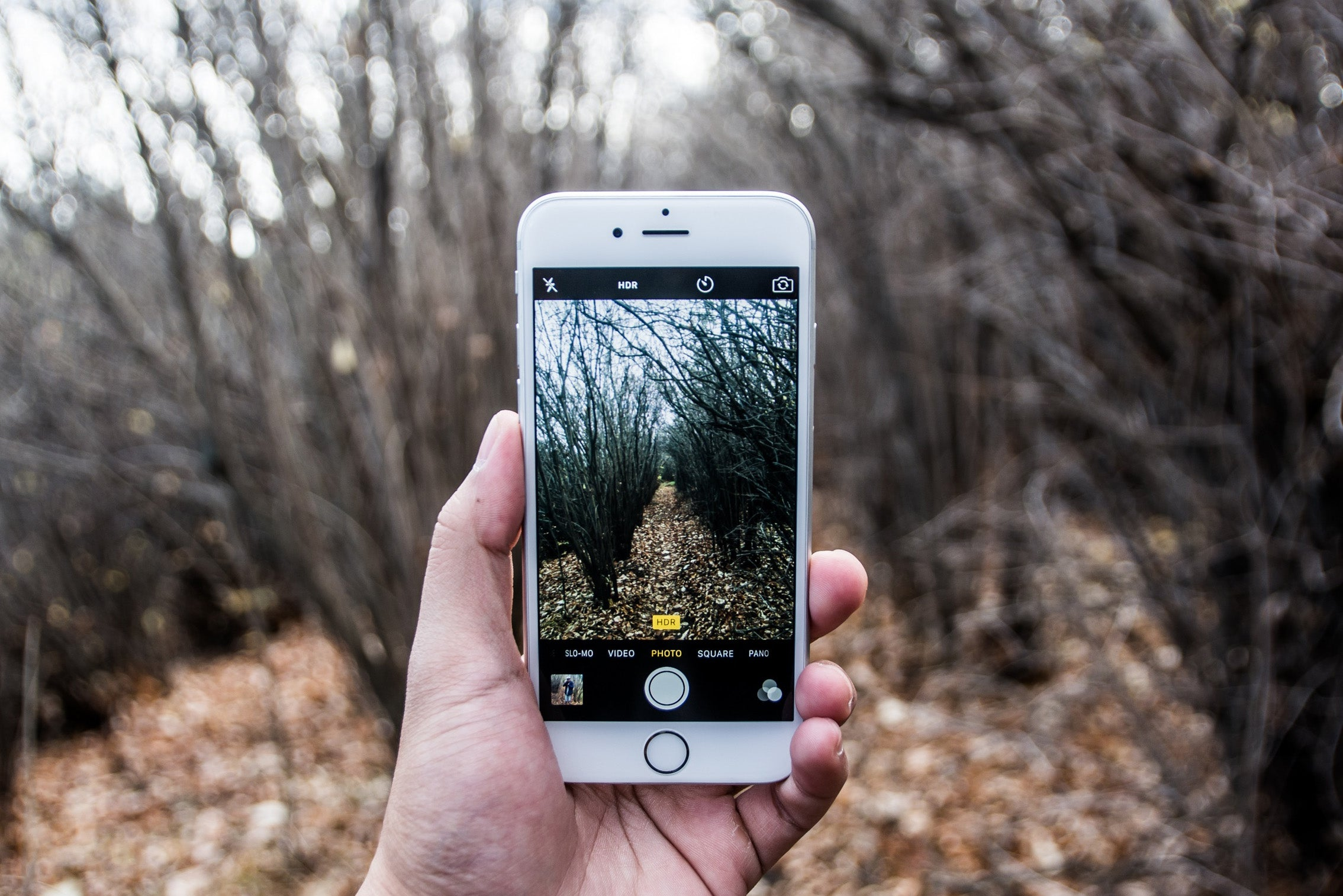 Take better hiking photos by using the iPhones HDR mode