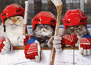 Hockey Cats