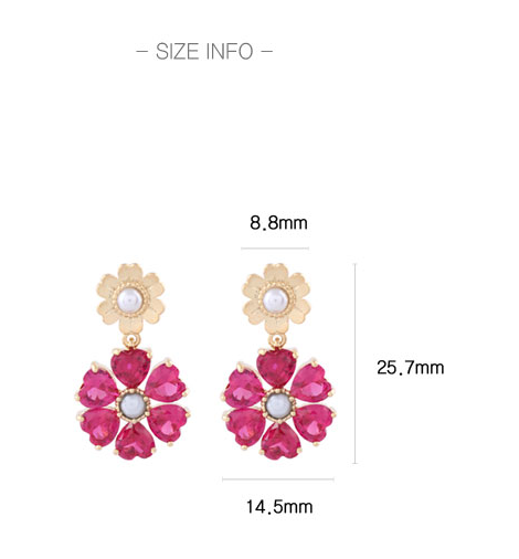 Cheery Berry Earring・HD02403