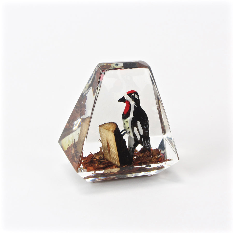 Acrylic woodpecker paperweight front view