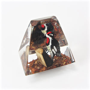 Acrylic woodpecker paperweight top angle view