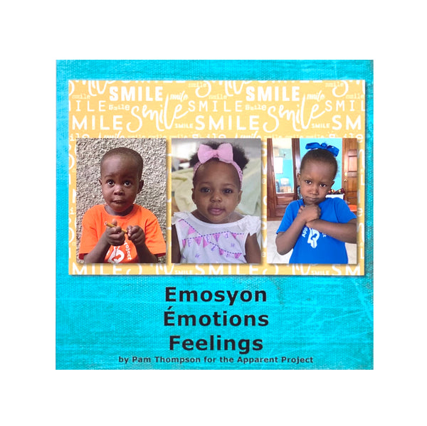 Book - Emosyon-Feelings by Pam Thompson