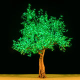 KENT - 9' Maple (Green)
