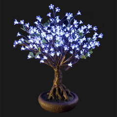 LINDEN - 2'4 Bonsai (Cool White)