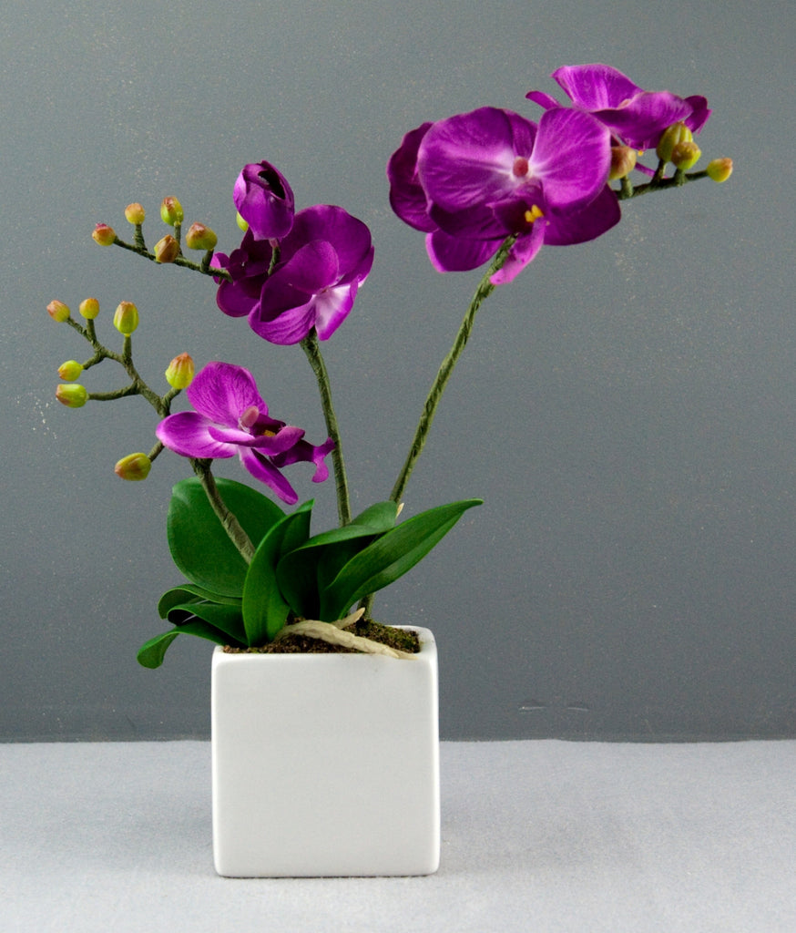 Bright Baum Artificial Large Led Purple Orchid Flower With Vase