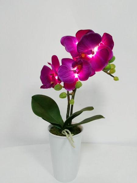 Pretty Valley Home - Artificial LED Orchid flower with vase