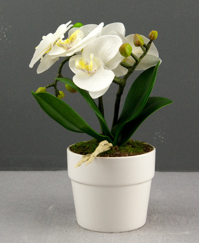 Bright Baum Artificial Led White Orchid Flower With Round Vase