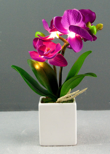 Pretty Valley Home - Artificial Medium LED Purple Orchid flower sq vase