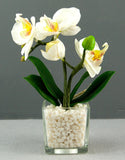 Pretty Valley Home - Artificial LED White Orchid flower with white stones