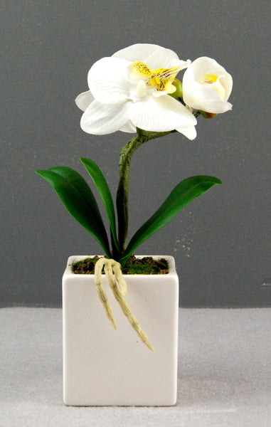 Pretty Valley Home - Artificial Small LED White Orchid flower sq vase