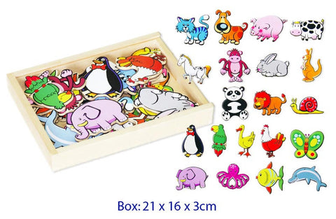 Magnetic Animals 20 pc
