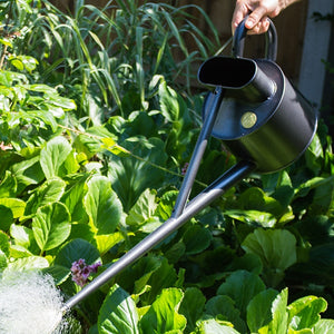 Haws Indoor and Outdoor Watering Cans