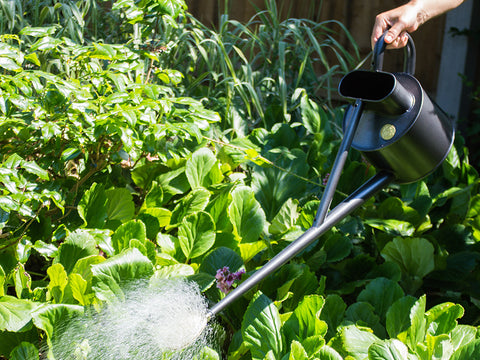 Haws 4.5 Litre Long reach Professional Metal Watering Can