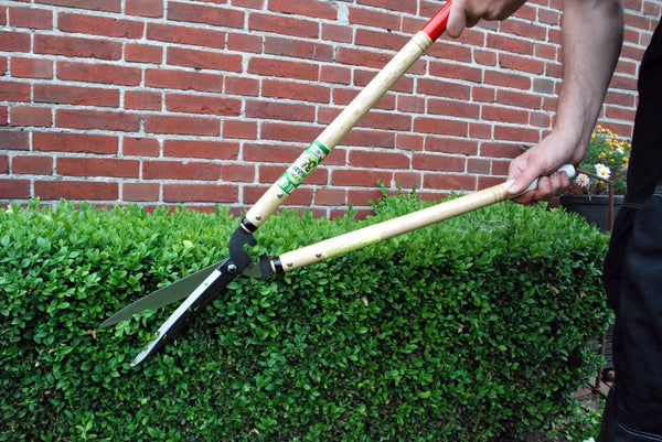 Okatsune 230 Japanese Hedge Shears - Long Handled with Long Blades