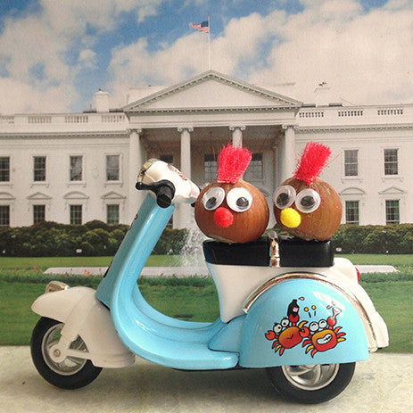 Two nut tourists riding moped by the White House in DC