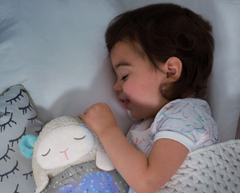Hug Me Projection Soother Lamb