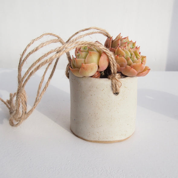 Handmade pottery hanging oatmeal planter