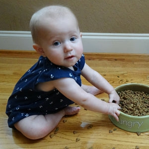 How to keep baby out of cat food