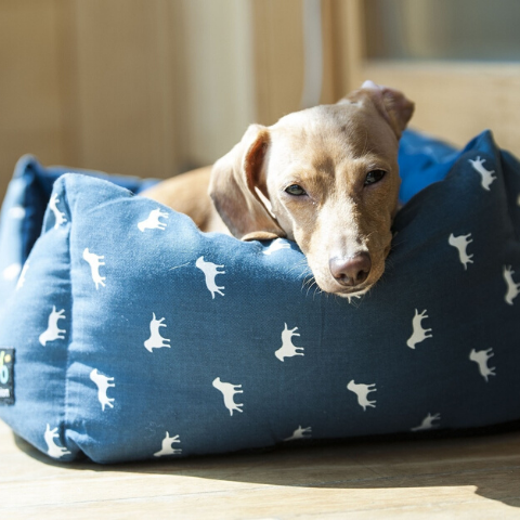 Pet Luxury - dog bed