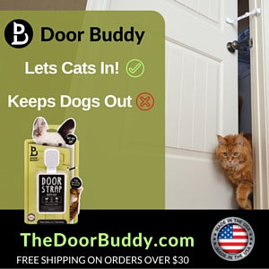 Door Buddy keeps dogs out of the cats litter box