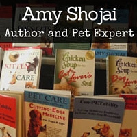 Amy Shojai on How to stop dog from eating cat poop