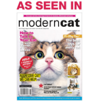 Modern Cat Magazine Must Have Items For Cat Owners