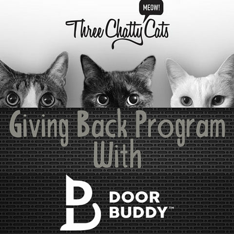 Three Chatty Cats Talking With Door Buddy About Their Giving Back