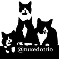 TuxedoTrio favorite product from Blog paws is The Door Buddy