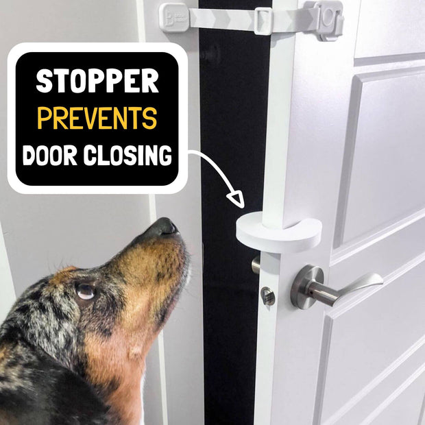 dog door stopper guard