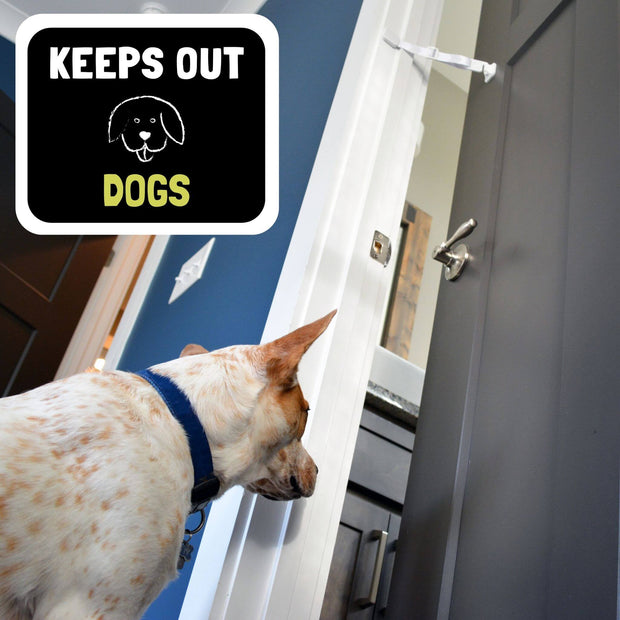 keep dog out of litter box door strap