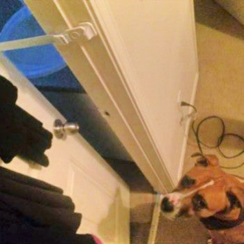 Door Buddy has held up for 80lb Boxer-Pit mix Review