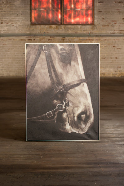 Black And White Side View Horse With Silver Frame