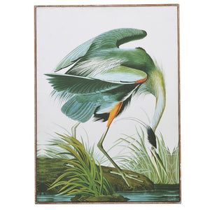 botanical crane picture