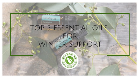 Top 5 Essential Oils for Winter Support