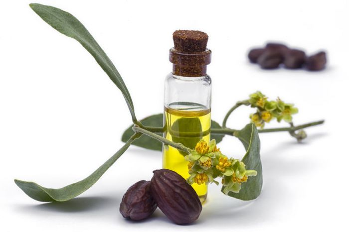 Why Jojoba oil is a must-have?