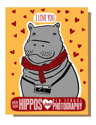Hippos Love Photography