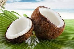 The rise of the coconut. Interesting facts and figures about coconuts!