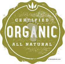 certified organic skincare truths orli for holist chic, all natural organic skincare orli the truth