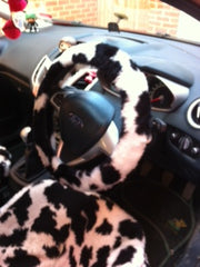 Black and White Cow print fuzzy faux fur car steering wheel cover furry and fluffy - Poppys Crafts