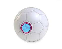 12x Ercall Team Printed Footballs, Ball Bag Included