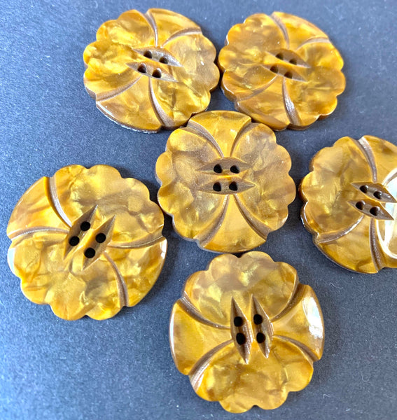 6 Wonderfully Unusual Autumn Leaves Vintage Casein 2.2cm or 2.7cm  Buttons