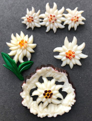 1940s Hand Painted Celluloid Edelweiss Brooches
