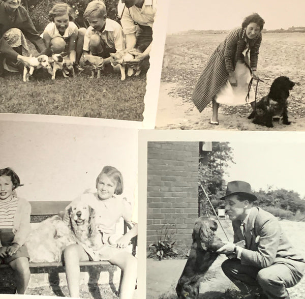 22 Photos from 1920s - 40s of Dogs and their Owners (A44)