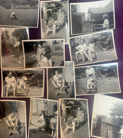 13 delightful 1930s photos - Playing with the Dog  in the Garden (A20)