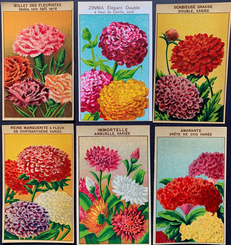 6 Gorgeous French 1920s Seed Packet Labels (No 1)