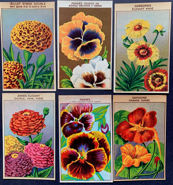 6 Gorgeous French 1920s Seed Packet Labels Pack O