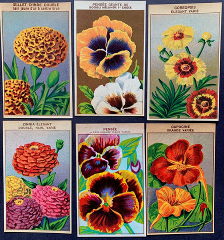 6 Gorgeous French 1920s Seed Packet Labels (No 3)