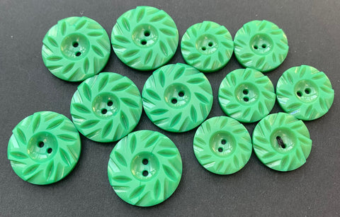 6 Pleasing Emerald Green Vintage Casein  2.2cm or 1.7cm  Buttons