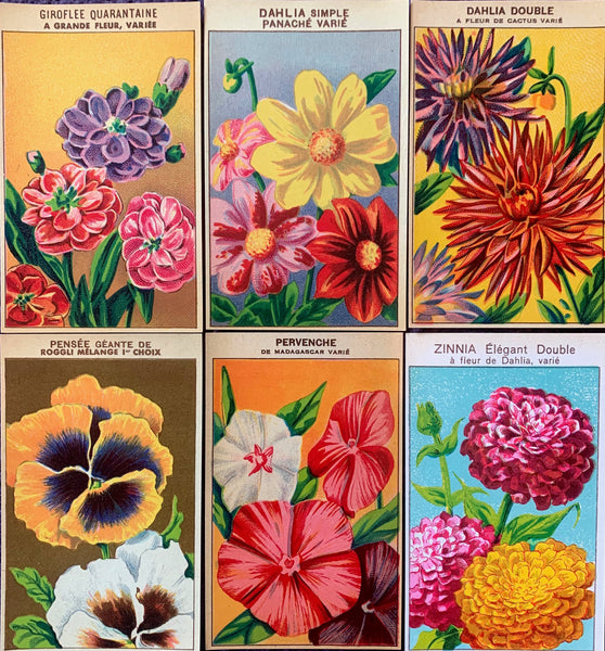 Gorgeous French 1920s Seed Packet Labels Pack H