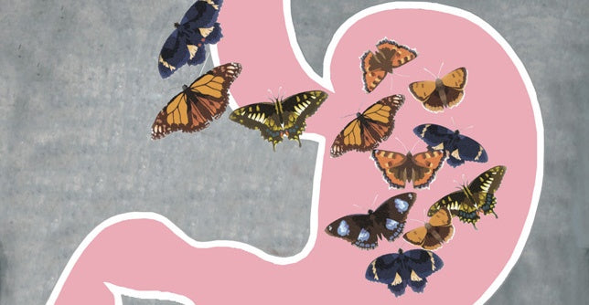 You Give Me Butterflies: The Effect Nerves Have on Your Gut
